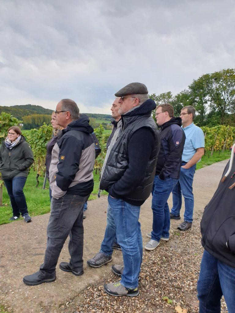Die Weingutgruppe lässt sich etwas über die Reeben erklären